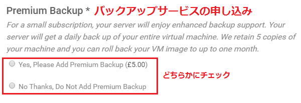 バックアップサービスの有無選択画面